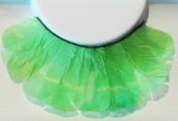 Grüne Federn