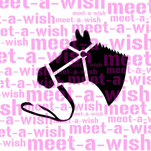 Glitzertattoo und Airbrush Schablone - Pferdekopf
